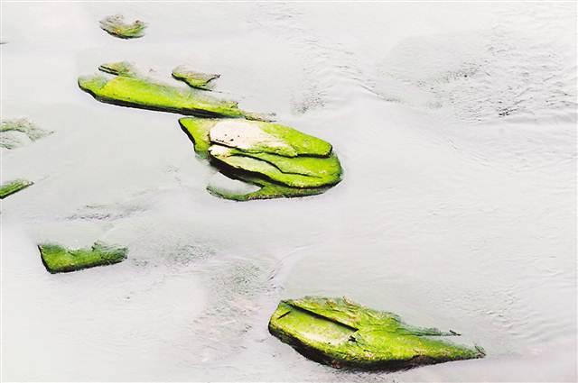 """江津莲花石时隔11年再度露出水面 被誉为""""川江七大枯水题刻""""之一"""