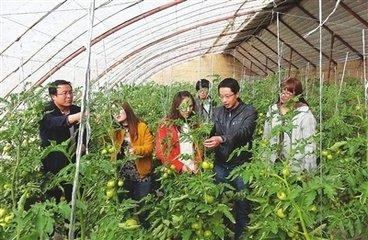 【名胜古迹】临夏县北塬乡崔家庄遗址